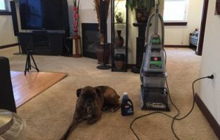 Hoover Carpet Cleaner Reviews