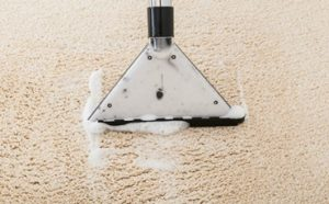 Can You Use Laundry Detergent in a Carpet Cleaner Featured