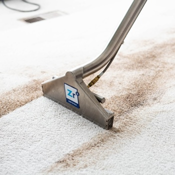 Can You Use Laundry Detergent in a Carpet Cleaner