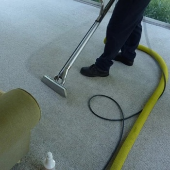 How to Use Laundry Detergent with a Carpet Cleaner